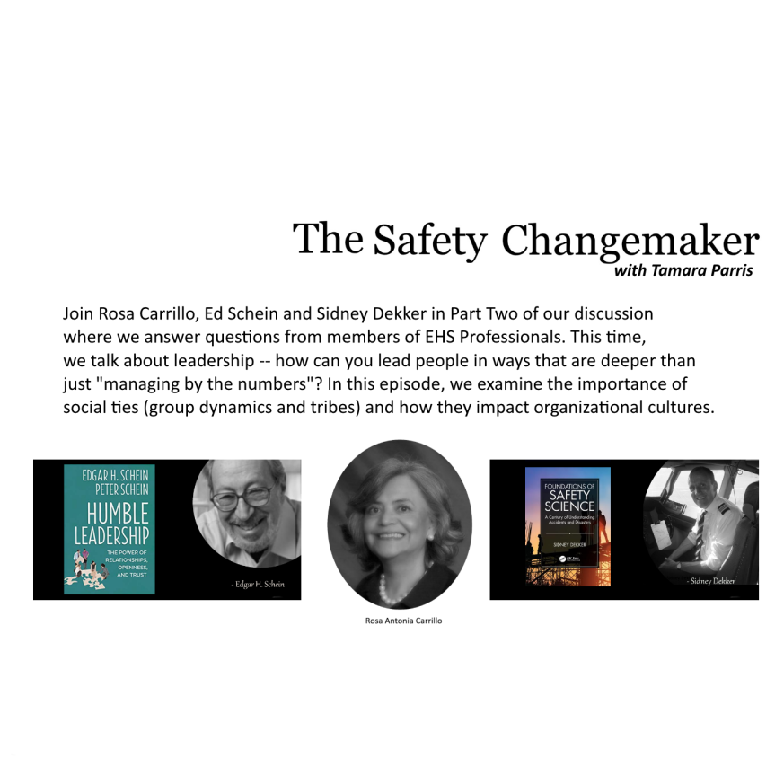 Safety Changemaker: Leadership ~ Rosa Carrillo, Edgar Schein and Sidney Dekker (Part Two)